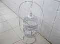 Where to rent BIRD CAGE W STAND WICKER MED in Louisville KY