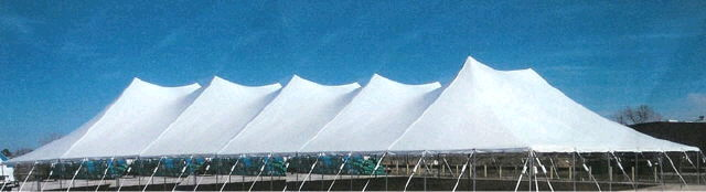 Where to find 60X210 TWIN POLE TENT in Louisville