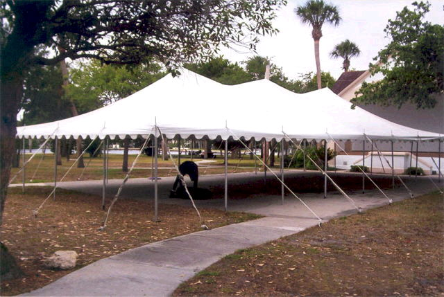 Where to find 30X60 HIGH PEAK POLE TENT in Louisville