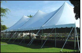 Where to find 40X100 HIGH PEAK POLE TENT in Louisville