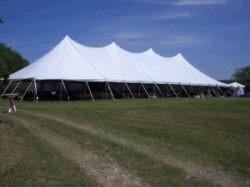 Where to find 40X100 POLE TENT in Louisville